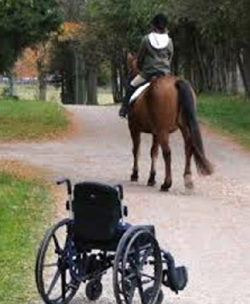 Therapeutic horseback riding research paper